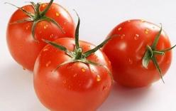 Những điều cấm kỵ khi ăn cà chua