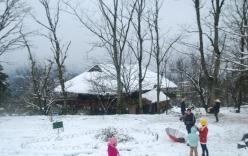 Tuyết rơi đầu mùa ở Sa Pa
