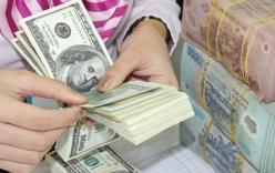 Đại gia lừa đảo Việt kiều Úc gần 7 triệu USD