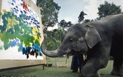 Những chú voi dùng vòi vẽ tranh bán giá ngàn đô