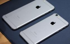 Tại sao nên mua iPhone 6 thay vì 6 Plus?