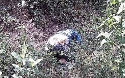 Hé lộ nguyên nhân tử vong vụ nữ sinh viên chết trong rừng