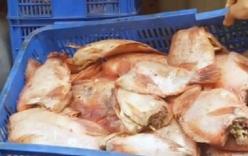 Chuyên gia nói gì vụ đưa hàng chục kg thịt thối, cá ươn vào trường học?