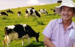 Bầu Đức xây biệt thự khủng nuôi… bò