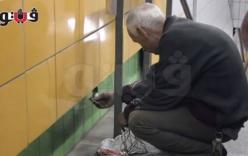 Giải cứu chú mèo bị mắc kẹt 5 năm trong tường