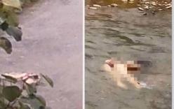 Vụ cô gái mặc nội y chết dưới suối: Bắt được hung thủ