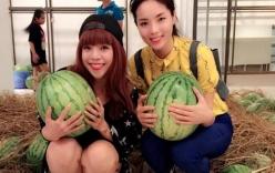 Hoa hậu Kỳ Duyên, Minh Chuyên đi bán dưa hấu