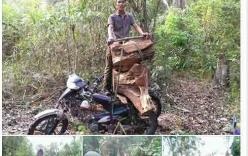 Clip: Lâm tặc tự quay clip phá rừng tung lên Facebook chém gió