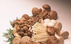 4 điều cấm kỵ khi chế biến nấm bạn tuyệt đối không mắc phải