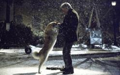 Rớt nước mắt vì lòng trung thành tuyệt đối của chú chó Hachiko