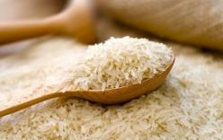 Chưa đủ cơ sở khẳng định gạo nhựa đã vào Việt Nam