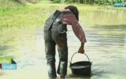 Video: Bé gái 10 tuổi sống bằng nước bùn chăm sóc người cha mù