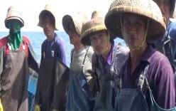 Phóng thích 3 tàu cá Trung Quốc ra khỏi vùng biển Việt Nam