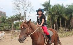 Video: Cận cảnh đàn ngựa đua tiền tỷ giữa lòng Hà Nội