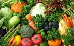 Những loại thực phẩm tăng cường trí nhớ dành cho sĩ tử trong mùa thi