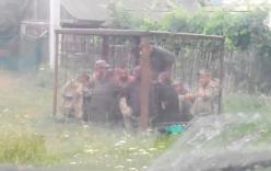 Video: Binh sỹ Ukraine bị nhốt vào chuồng thú vì say rượu