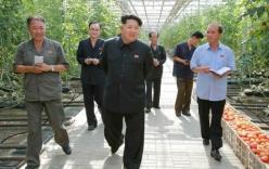 Hàn Quốc: Kim Jong-un đã hành quyết 70 quan chức kể từ khi nắm quyền