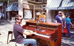 Chàng trai bỏ việc, cùng chó cưng vác piano đi du lịch vòng quanh thế giới