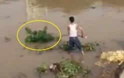 Hải Phòng: Thi thể phụ nữ đang phân hủy nổi trên sông