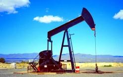 Giá dầu thế giới sụt giảm, các đại gia
