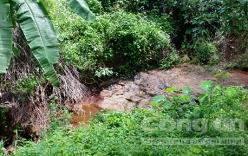 Lời khai người mẹ vứt con trai 1 tháng tuổi xuống suối ở Bình Phước