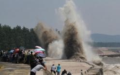 Hàng nghìn người đổ xô tới xem thủy triều cực hiếm trên sông Tiền Đường
