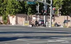 Cảnh sát liều mình cứu tài xế say xỉn thoát chết trên đường ray