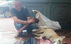 Bản tin 113 – sáng 5/8: Hạ độc chó bằng hóa chất chứa Cyanua rồi bắt trộm…