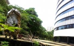 Cận cảnh bệnh viện nghìn tỷ bỏ hoang của