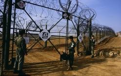 Hàn Quốc tố Triều Tiên cài mìn khiến 2 binh sĩ đứt chân