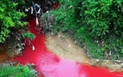 Điện Biên: Dòng suối bất ngờ chuyển sang màu đỏ như máu