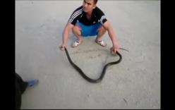 Thanh niên dùng gậy bắt rắn dài 2m từ trong bể nước