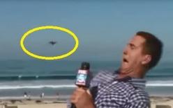 Phóng viên la hét trên sóng trực tiếp chỉ vì thấy côn trùng