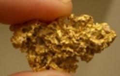 Vụ nhặt được 5 lượng vàng trong rác: