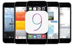 Nhiều người dùng gặp lỗi khi tải iOS 9