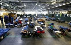 Đức: Đốt phá khu lưu trú của người tị nạn vì tư tưởng bài ngoại
