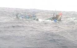 Tàu cá Việt Nam bị tàu nước ngoài tông chìm ở Trường Sa, 7 ngư dân rơi xuống biển