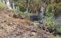 Phát hiện thi thể nam thanh niên nằm úp mặt xuống ruộng, người đầy bùn đất