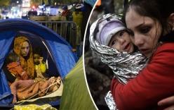 Trao đổi tình dục – bi kịch xót xa của những trẻ em di cư
