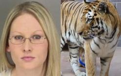 Muốn vuốt ve hổ trong đêm Halloween, người phụ nữ bị cắn nát tay