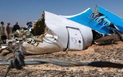Anh nghi bom cài trong khoang hành lý của máy bay Nga bị rơi