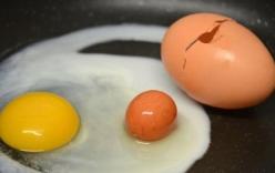 Hiện tượng hiếm gặp: Trứng trong trứng