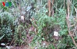 Người đàn ông bị sát hại trong rừng: Bắt khẩn cấp 2 đối tượng