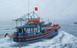 Bộ Quốc phòng đang điều tra vụ ngư dân Việt bị bắn tại Trường Sa