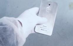 Tranh cãi về video quay lén iPhone 7 tại Foxconn