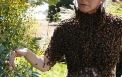 Video: Kinh hãi cô gái để 12.000 con ong  phủ kín ngực trần thay cho áo