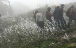 Giới trẻ đổ xô lên Mẫu Sơn chụp ảnh băng giá
