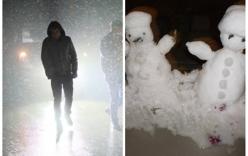 Ngắm những hình ảnh tuyết rơi đầu tiên tại Sapa năm 2016
