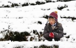 Châu Á hứng đợt lạnh lịch sử