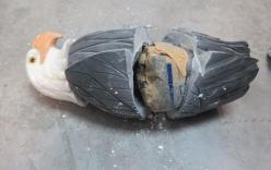 Cocain trị giá 5 tỷ đồng giấu trong tượng chim đại bàng về Việt Nam